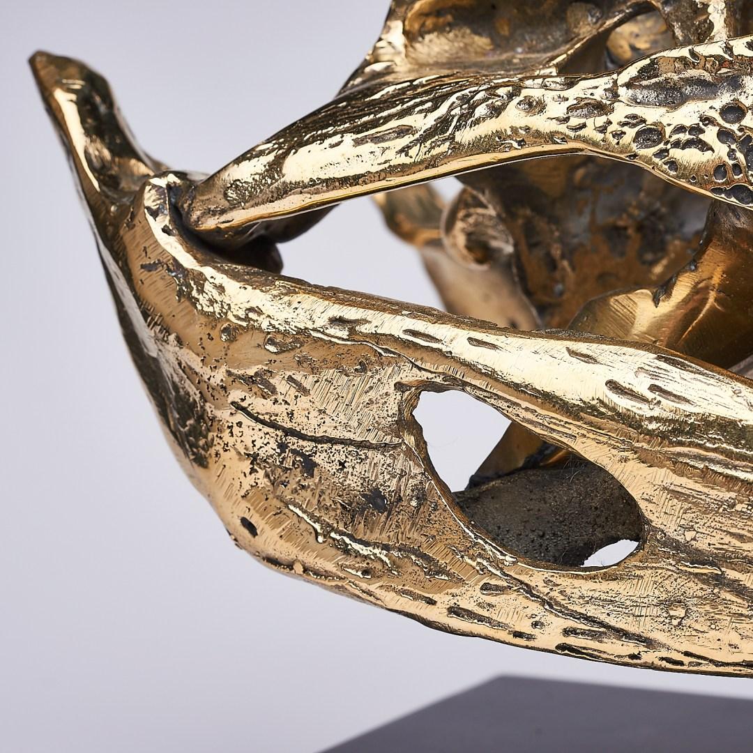 Saltwater Crocodile Skull 2.0, Medium