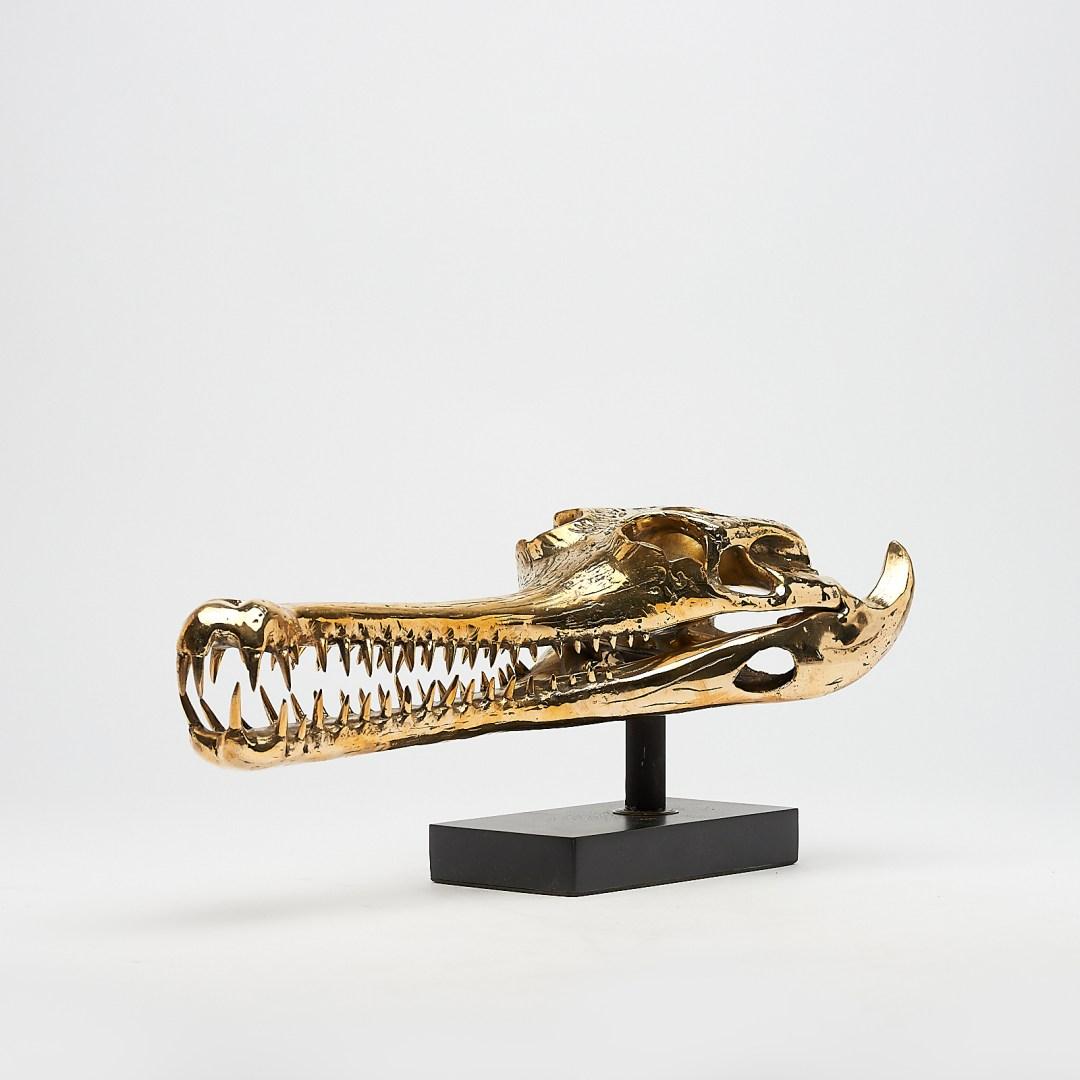 Medium Polished Bronze Gharial Skull