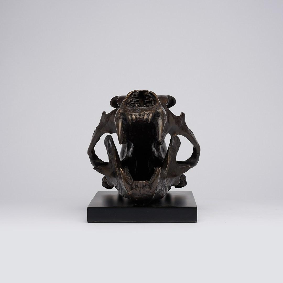 bronze polar bear skull