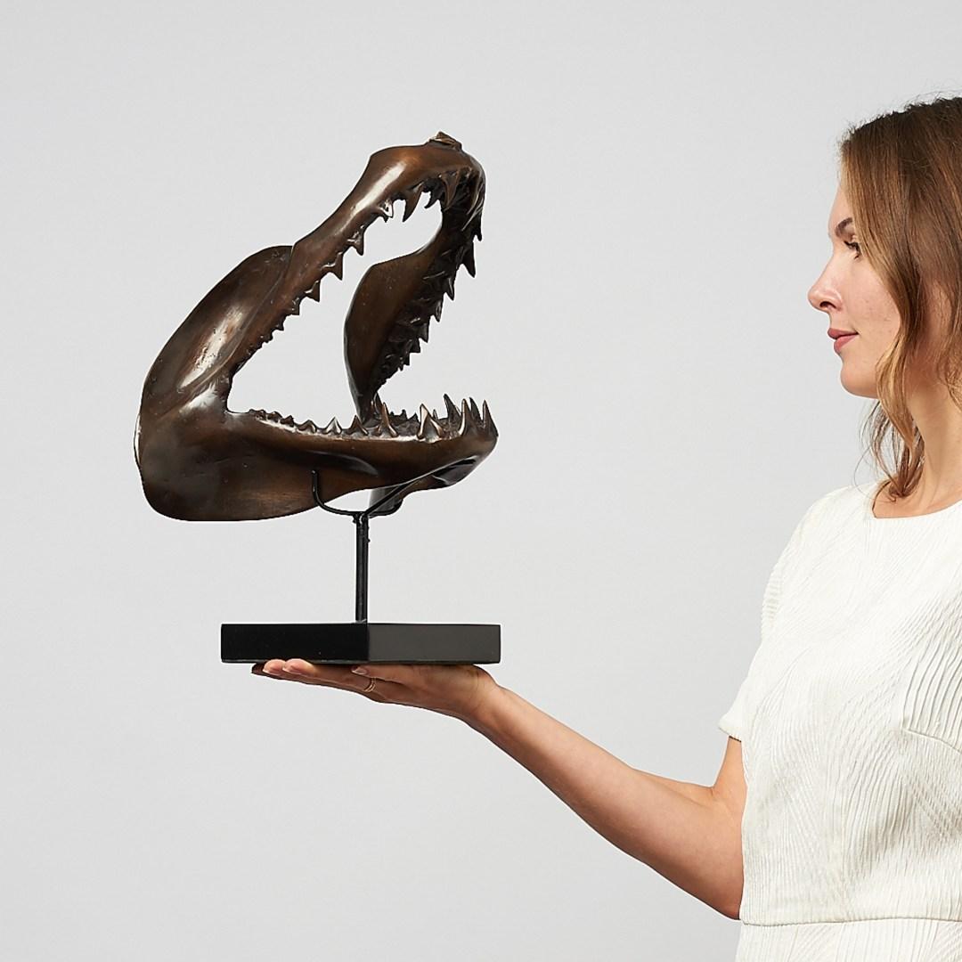 bronze mako shark jaw