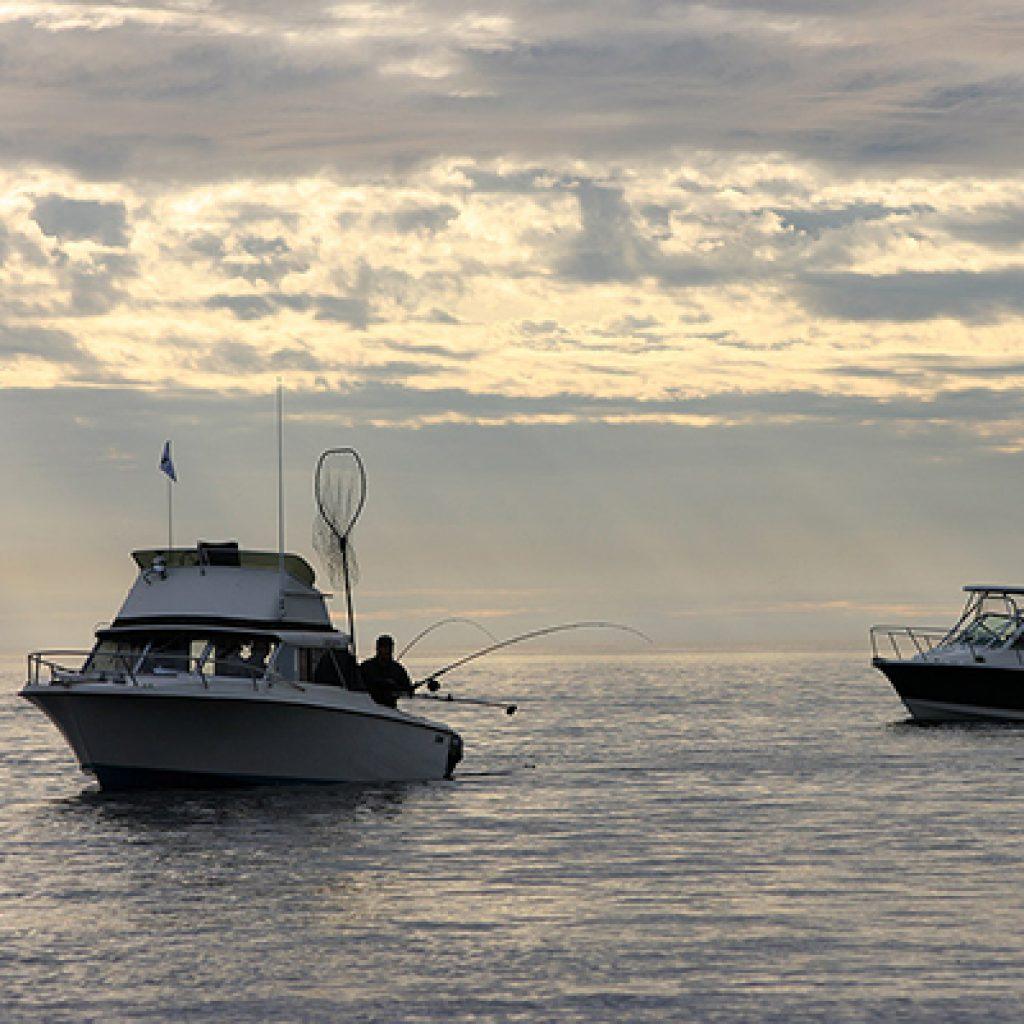 Fishing & Marina