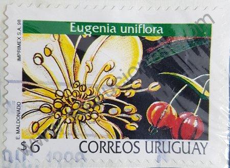 Eugenia uniflora estampilla Uruguay 1998