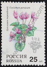 Sello Rusia 1993 Cyclamen persicum