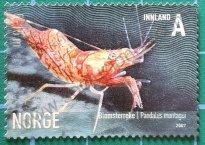 Sello Pandalus montagui Noruega 2007