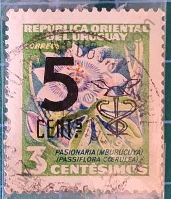 Flor de la Pasión - Sello Uruguay 1959 5c