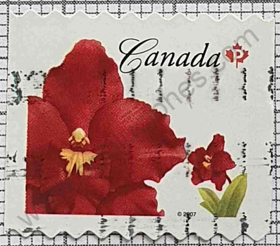 Orquídea Oncidium - Sello de Canadá año 2007