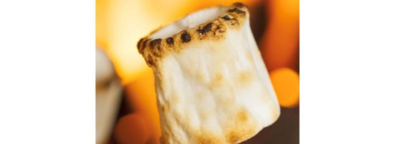 Toasted marshmallow scented candles and products