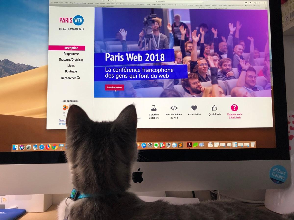 Page d'accueil de Paris-Web et Pixel, mon chat qui observe la page