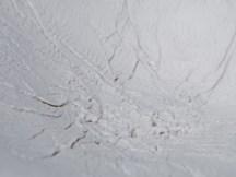 Détail, coupe porcelain, la 'Corse', 31 cm x 27 cm.