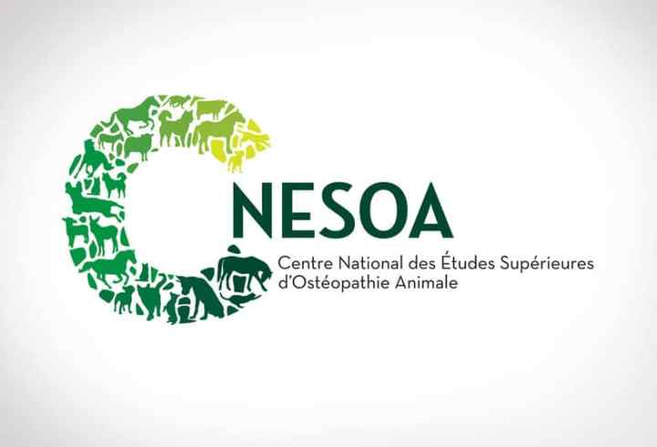 Logo C-NESOA