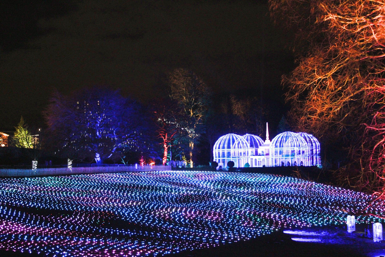 Birmingham Christmas Lights.Christmas Lights At The Birmingham Botanical Gardens