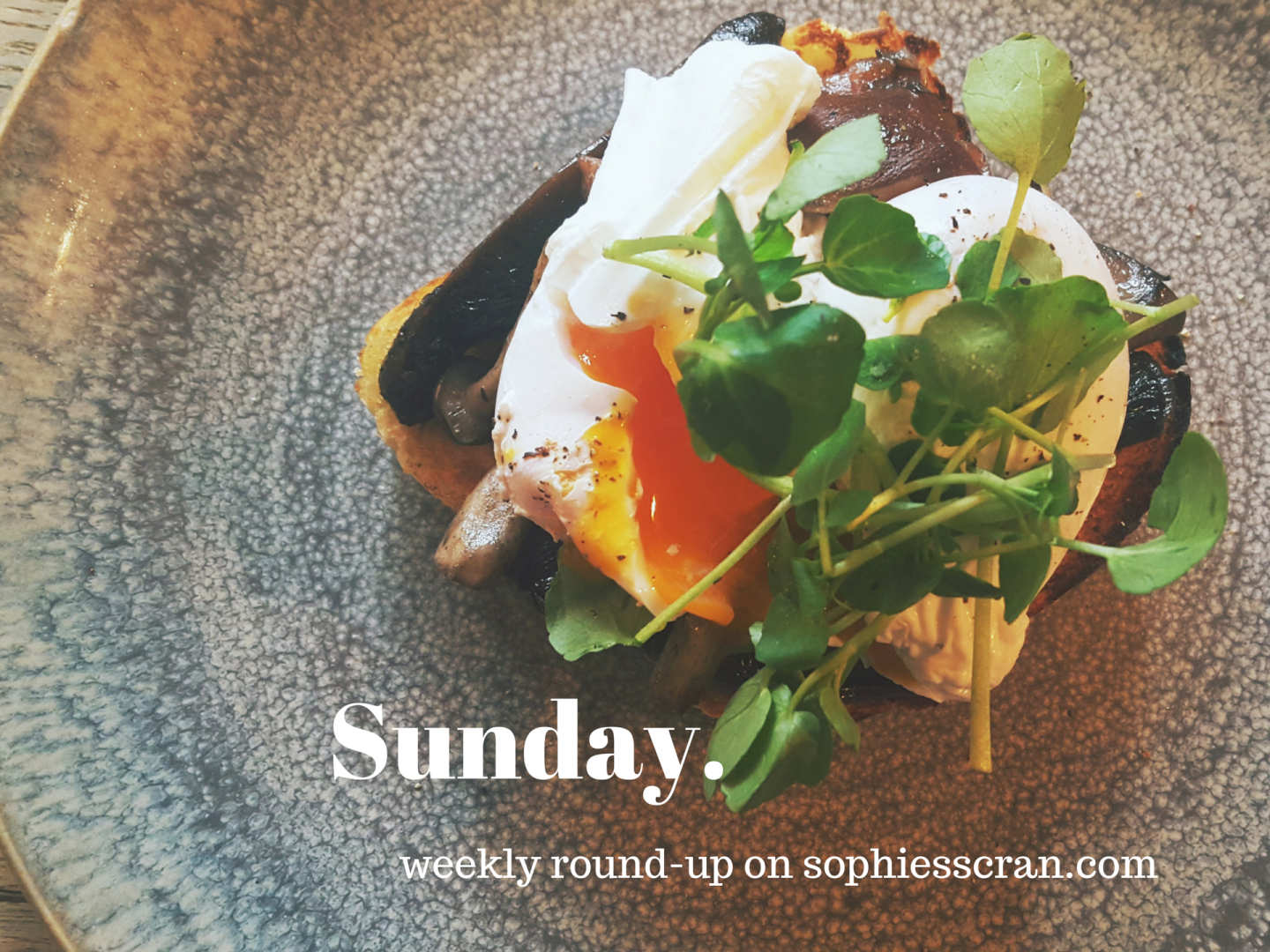 Sunday round up 31/01/2016