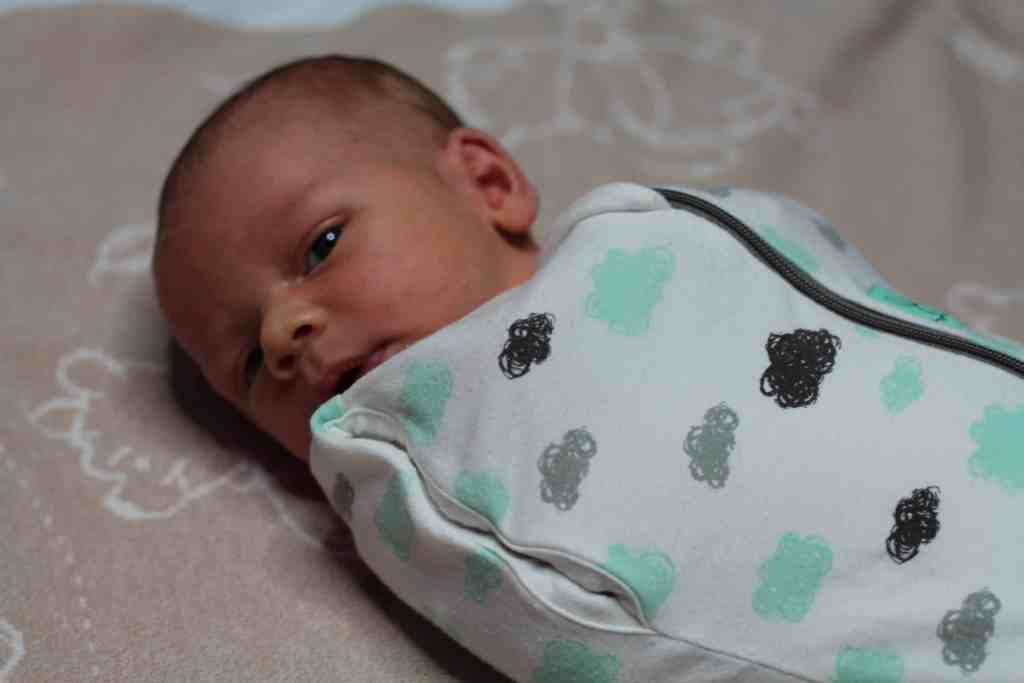ergo Pouch Swaddle and Sleep Bag