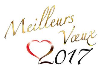 meilleurs_voeux2017
