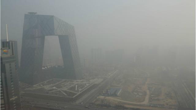 Niveles de contaminación alarmantes.