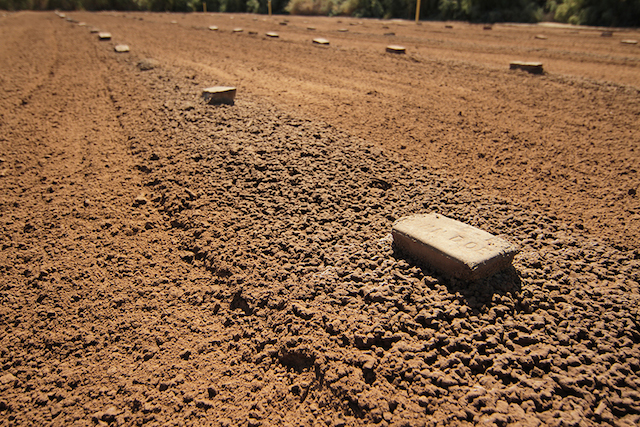 John-Doe-bricks-at-the-Holpville-Cemetary--2009