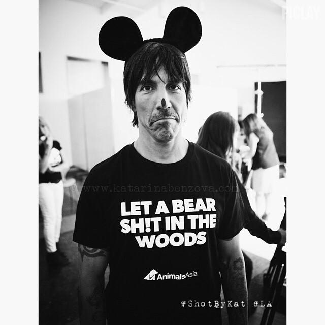 ¡Dejen cagar a los osos! dicen Ozzy, Anthony Kiedis, Duff McKagan y más