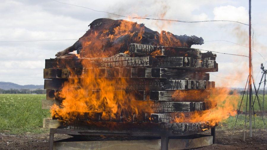 science-experimento-revista-quema-cuerpos-ayotzinapa