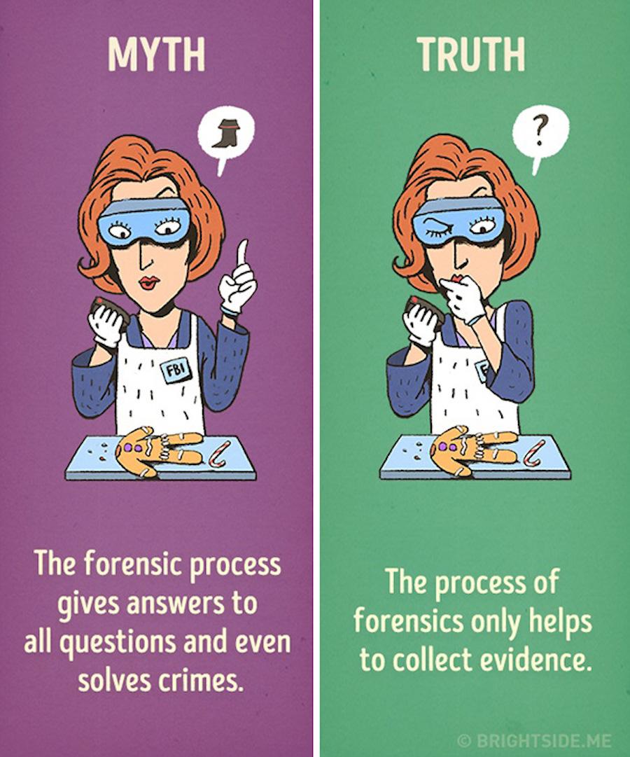 Mitos del cine - Proceso forense