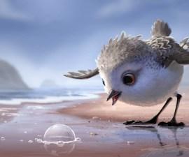 Pixar Piper Shortfilm