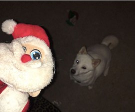 Kya y su juguete de Santa