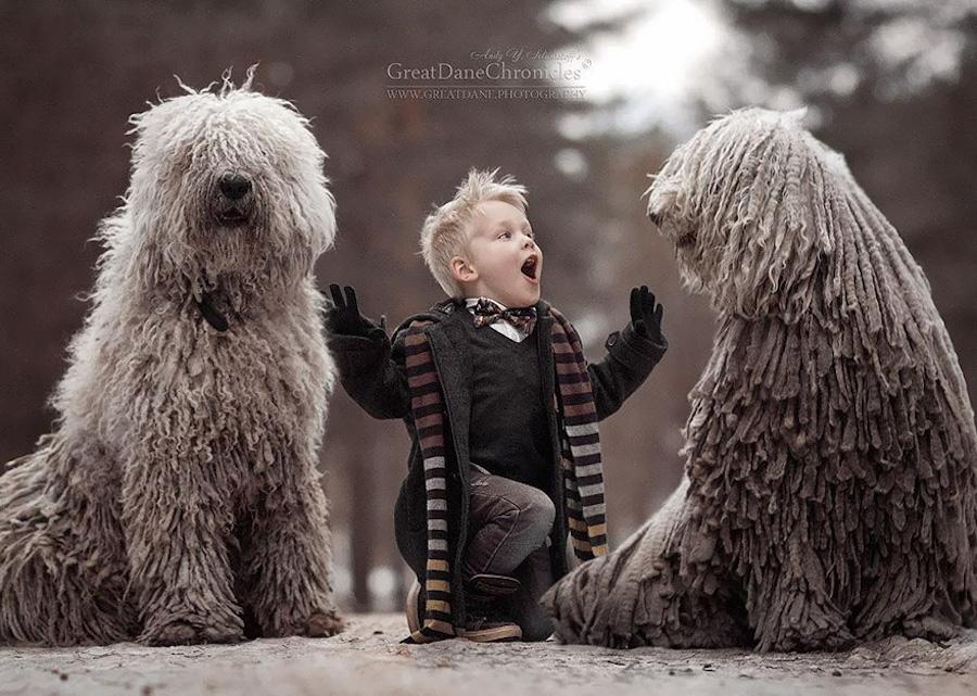 Perrito y amigos