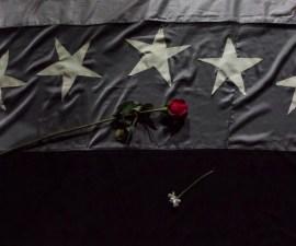 Bandera de Venezuela color negro con un rosa