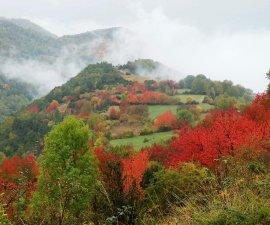otoño en Huesca