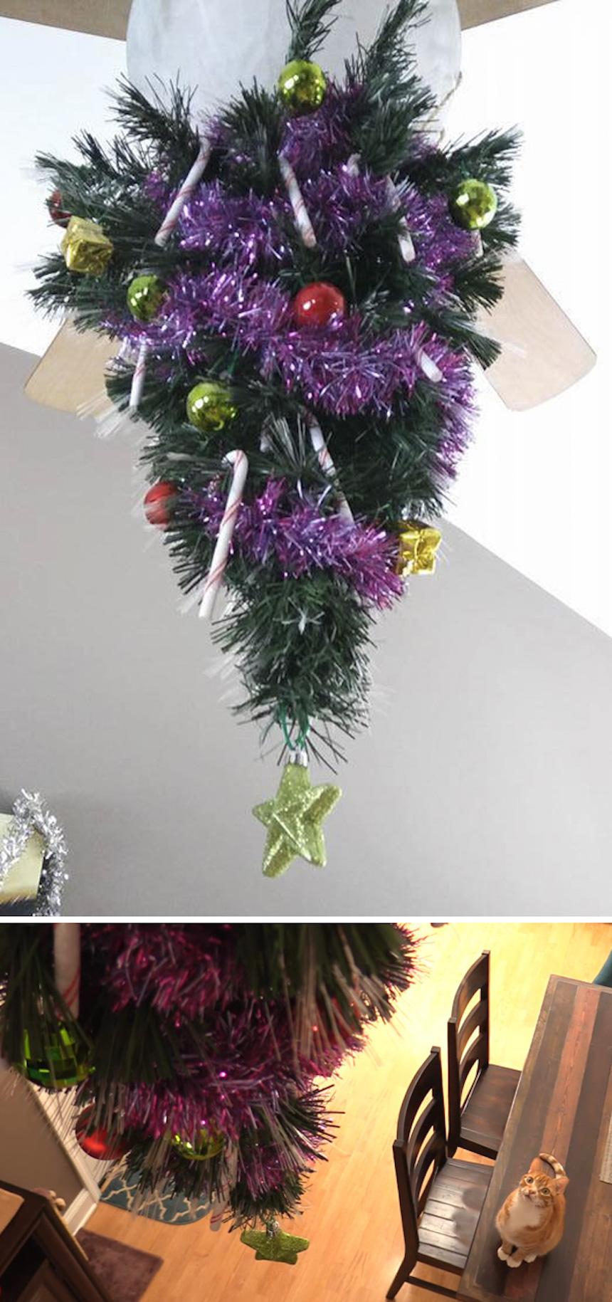Protegiendo árboles de Navidad - De cabeza