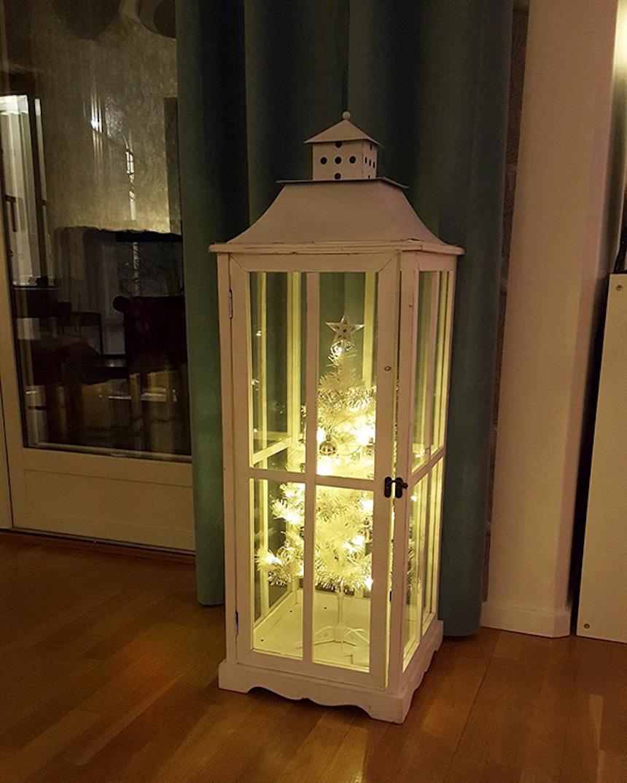 Protegiendo árboles de Navidad - Cajas