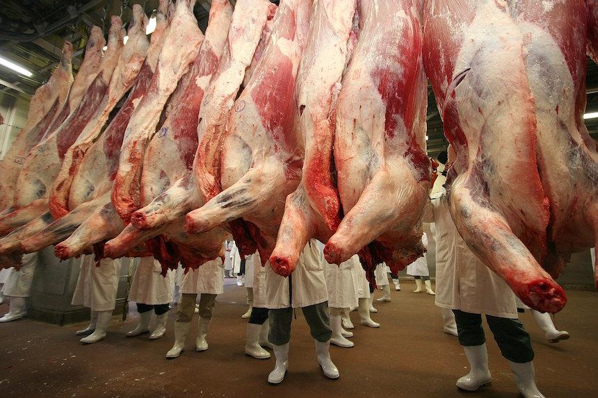En México venden carne de caballo en lugar de res