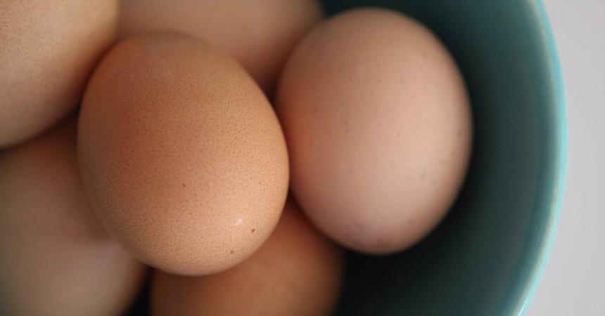 ¿Realmente el huevo sube los niveles de colesterol?