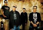 Offspring a VOILT 2008 - on