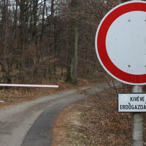 FIGYELEM! Lezárják a soproni parkerdőt nagyvad terelővadászat miatt!
