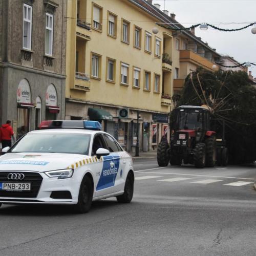 Megérkezett és csodaszép idén Sopron fenyőfája (képek+videó)
