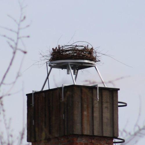 Gólyafészek került a Soproni Rendőrkapitányság kéményére