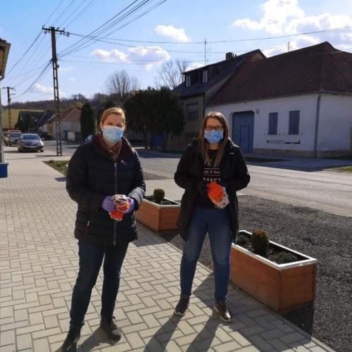 Ingyenes maszkokat juttatnak el a balfi lakosoknak