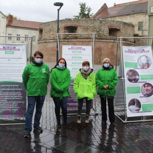 Alapjövedelem: Sopronban is tart a kampány, online is lehet támogatni