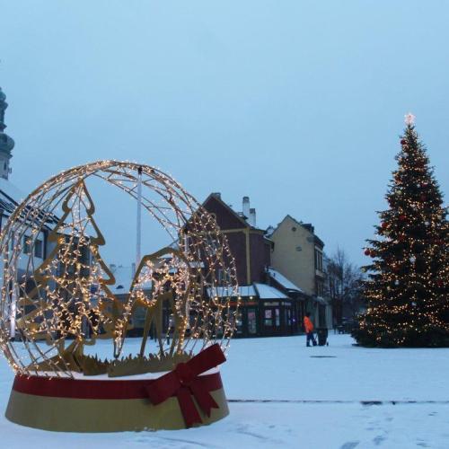 Flashmob jellegű adományozásra készülnek a civilek a soproni karácsonyfa tövében