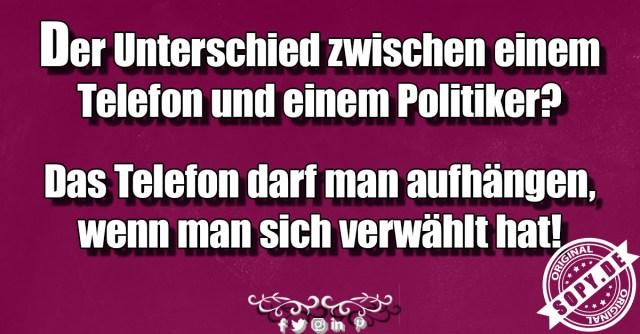 Unterschied zwischen Politiker