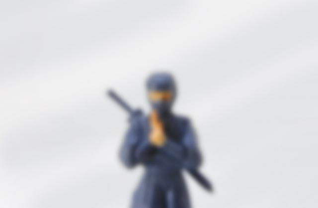 Ninja experiences at Oshino Shinobi no Sato