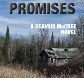 Empty Promises Book Cover