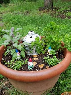Herbal Fairy Garden