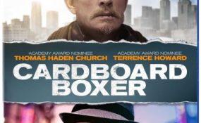 cardboard-boxer-srf