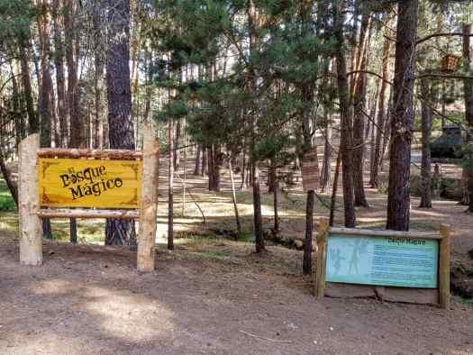 Bosque Mágico de la Fuente del Pino