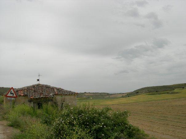 Cenegro
