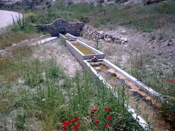 Fuente de Cenegro