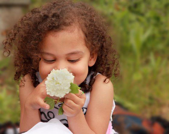 little girl smelling white flower