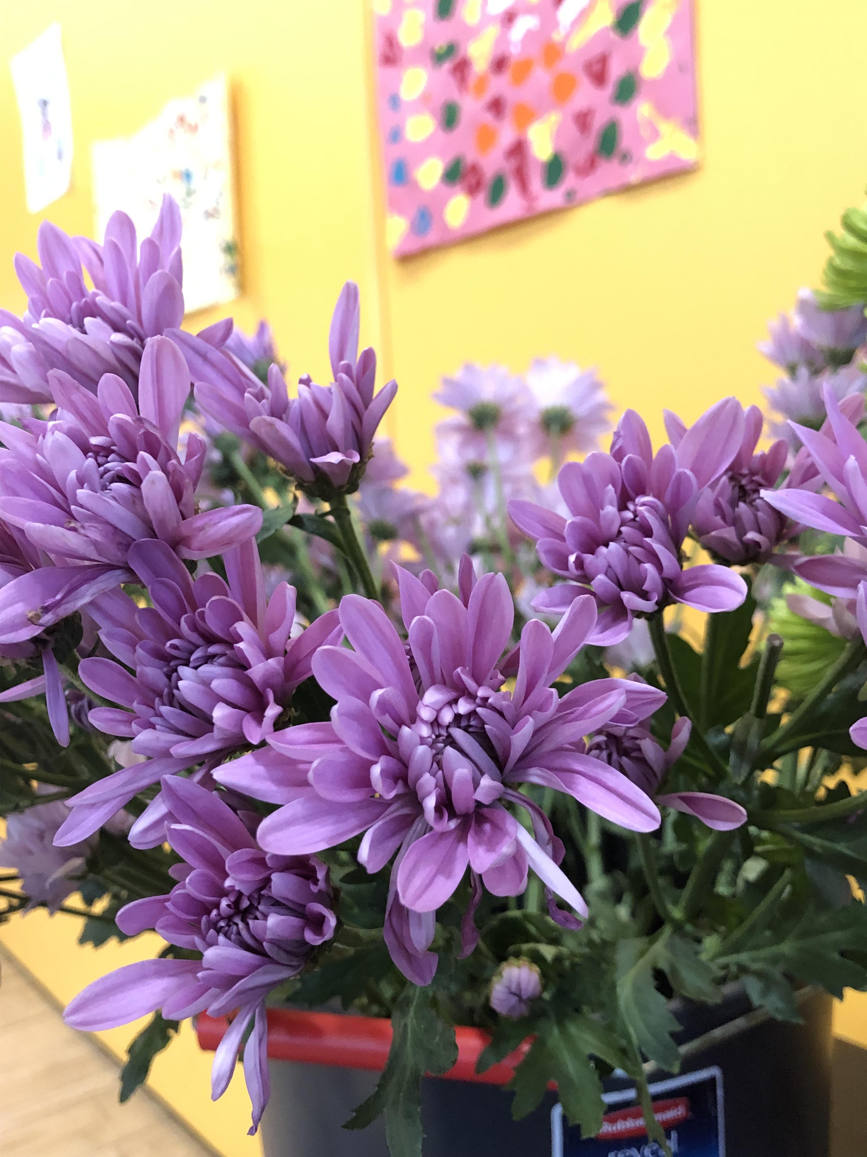 floral arragement