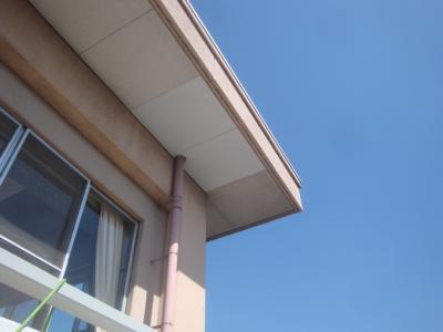 軒裏天井の補修 工事前
